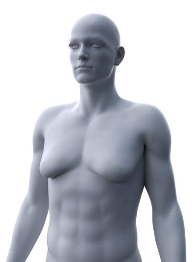 3d prikaz moškega telesa z ginekomastijo